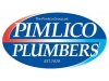 Pimlico Plumbers Ltd Logo